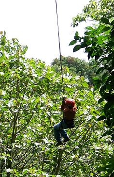 This is The Tarzan Swing at the Cloud Forest in Monteverde, Costa Rica (the best place ever!)