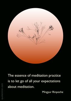 The essence of meditation practice is to let go of all your expectations about meditation.   –Mingyur Rinpoche #expectation #meditation http://quotemirror.com/s/9fov3