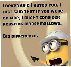 Best 30 Minion Quotes