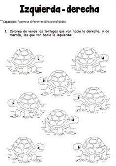 Actividad: Colorea de verde las tortugas que van hacia la derecha, y de marrón, las que van hacia la izquierda. Math Games, Math Activities, Emergent Curriculum, Numbers Kindergarten, Pre Writing, Math For Kids, Spanish Lessons, Worksheets For Kids, Graphic Organizers