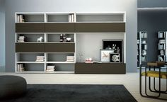 Outstanding Wall Storage Units