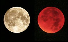 The normal perigee full moon, or supermoon (L), and appearing red during a total lunar eclipse (R) over Wiesbaden, Germany on Sunday night 27/28-09-15. Picture: EPA/Fredrik Von Erichsen