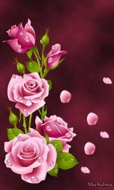 Wallpaper Nature Flowers, Flower Phone Wallpaper, Beautiful Nature Wallpaper, Butterfly Wallpaper, Flower Wallpaper, Iphone Wallpaper, Beautiful Rose Flowers, Exotic Flowers, Flower Meanings