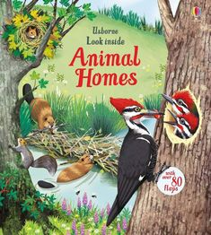Booktopia has Look Inside Animal Homes, Look Inside Board Books by Emily Bone. Buy a discounted Board Book of Look Inside Animal Homes online from Australia's leading online bookstore. Rainbow Resource, Animal Books, Sea And Ocean, Inspirational Books, In The Tree, Animal House, Under The Sea, Habitats, 1970s