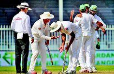 Pakistani crickters celebrating victory to raise wicket
