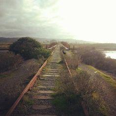 .railroad tracks Abandoned Train, Abandoned Cars, Abandoned Places, Old Trains, Ferrat, Parks N Rec, Holland, Train Tracks, Far Away