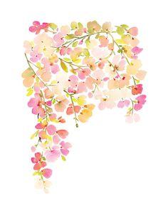 Light Pink Cherry Blossoms Art Print by Yao Cheng   Minted $20