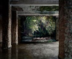 """Noémie Goudal """"Haven Her Body Was"""" Exhibition @ Edel Assanti: Unlike civilizations throughout history that have erected buildings and artificial shelters in Puerto Serie, Masterpiece Theater, Urban Nature, Saatchi Gallery, Photography Themes, Nature Images, Installation Art, Art Installations, Artist At Work"""