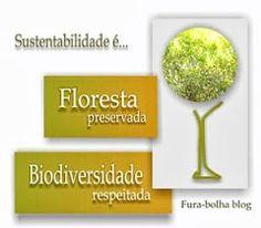 Sustentabilidade   Fura-bolha