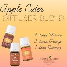 Young Living 91127592449037976 - Smells like fall! Great diffuser blend for your Young Living Essential Oils ☕ Autumn is my favorite! Young Living Independent Distributor 2441111 Source by busybeingjenn Essential Oil Diffuser Blends, Doterra Essential Oils, Natural Essential Oils, Young Living Essential Oils, Young Living Thieves, Thieves Essential Oil, Yl Oils, Natural Oils, Apple Cider