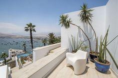 plantes exotiques en tant qu'accent sur la terrasse extérieure