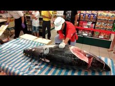 Huge Tuna Complete Processing | Filleting and Cutting Tuna | Frozen Tuna