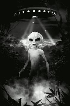 Detectaron más de 200 posibles mensajes extraterrestres proveniente de las estrellas