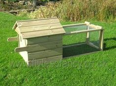This small coop can be easily moved around the yard.