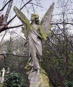 Highgate Cemetery London  A Grave at Highgate Cemetery