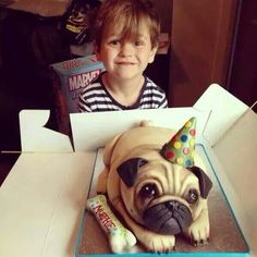 Pug cake! ....but then you would cut into and eat a pug!!!