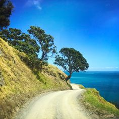 The Road to Port Jackson