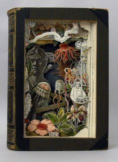 The illustrations in this book are revealed in layers by cutting through pages to remove unwanted text and paper. Amazing craft.