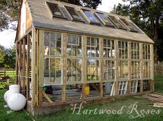 Amazing Greenhouse idea made from windows and doors. Thinking you could take this idea and use salvaged door and windows??
