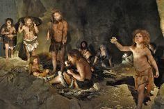 The empath's guide: Cro-Magnon, Neanderthal, minorities, women ...