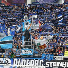@Paderborn07 fans #9ine Sc Paderborn 07, City Photo, Fans, Football Soccer