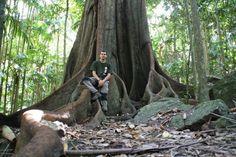 UNA AVENTURA PEL MÓN: AUSTRALIA: CARNARVON NATIONAL PARK Y TAMBORINE NATIONAL PARK