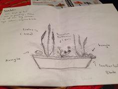 Skisse til vegetativ