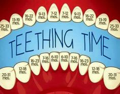 And Your Baby: Symptoms And Remedies Excellent teeting chart - when to expect to see those teeth!Excellent teeting chart - when to expect to see those teeth! Baby Trivia, Pinterest Baby, Baby Life Hacks, Foto Newborn, Newborn Care, My Bebe, Baby Care Tips, Baby Planning, Baby Health