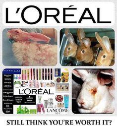 Hayvanlar üzerinde test yapan Loreal marka hiçbir ürün kullanmayın!!!Hayvanlar üzerinde test yapmayan Türkiye'deki firmaları görmek için fotoğrafa tıklayın.