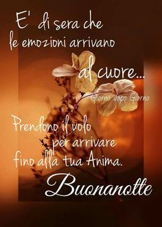 .. Good Morning Good Night, Day For Night, Belle Photo, Pictures, Dolce, Italian Phrases, Anna, Album, Facebook