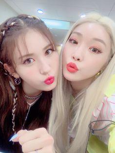 190628 chungha_official IG updated with Somi🧡 Jeon Somi, K Pop, Kim Chanmi, Kim Chungha, I Love You Girl, Girl Celebrities, Pop Idol, Ulzzang Girl, K Idols