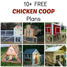 10+ Free DIY Chicken Coop Plans And Ideas, How To Build A Chicken Coop