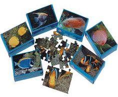 Fish Jigsaw Puzzles Case Pack 8