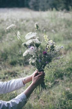 Our Food Stories // Wild flowers