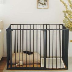we dog & cat home furnishing Small Puppies, Playpen, Dog Daycare, Home Furnishings, Dog Cat, Cats, Interior, Furniture, Shop