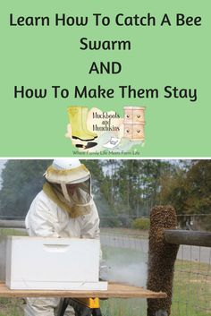 Learning how to catch a bee swarm is only one aspect of taking care of a swarm. Learn how to provide for your bees needs, so they stay!