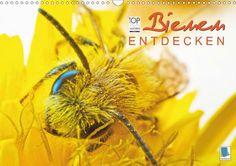 Bienen entdecken - CALVENDO Kalender - #bienen #kalender