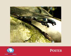 Poster: Oldtimer Auto Jagurar - Mein Posterladen - DaWanda