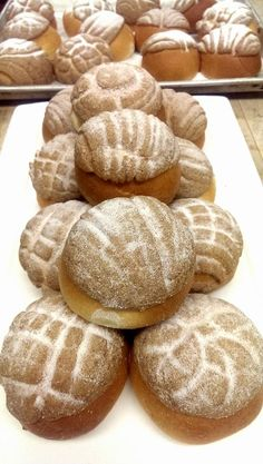 Fresh Conchas Pastry Chef, Bread, Food, Meal, Brot, Eten, Breads, Meals, Bakeries