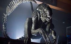 Alien suit from Aliens vs Predator: Requiem Alien Convenant, Saga Alien, Alien Hive, Alien Suit, Predator Movie, Predator Alien, Hr Giger Art, Science Fiction, Film Workshop