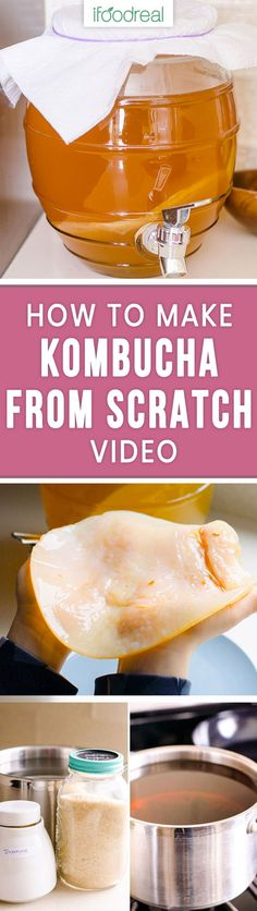 Best, basic and easy VIDEO 1 gallon Kombucha Recipe or how to make kombucha tea at home including growing your own kombucha SCOBY, make it fizzy and add kombucha flavors. 30 times cheaper than store bought! #ifoodreal #kombucha #tea #healthy #healthyrecipes