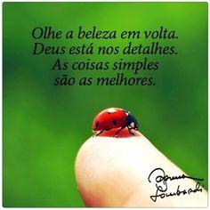 O melhor da vida está na simplicidade e é de graça!  Coisas simples fazem bem pra saúde, pra pele, pro humor e pra auto estima.