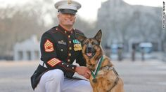 A U.S. Marine Corps dog, who lost her leg when an IED detonated underneath her, received a medal for courage.