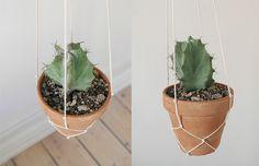 DIY Guide: hængende planter Diy Hanging, Hanging Plants, New Room, Guide, Diy Projects To Try, Planter Pots, Design Inspiration, Forelsket, Layout Inspiration