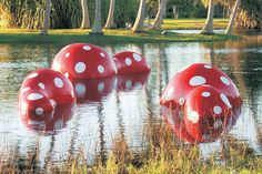 Major Outdoor Exhibition by Internationally Acclaimed Artist Yayoi Kusama