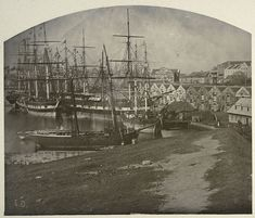 Campbell's Wharf Early view of Dawes Point on the western side of the Quay The Rocks Sydney, Sydney City, Melbourne Victoria, City Landscape, Historical Architecture, Historical Pictures, Tall Ships, Sydney Australia, Aerial View