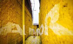 Brasile_favelas_progetto di architettura_Amor