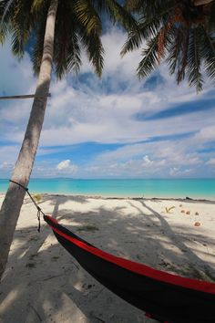 An island for yourself. With a hammock and a good book, you are ready  to spend the day relaxing on this warm beach. It ...