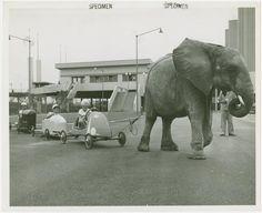 New York World's Fair (1939-1940) #expo2015