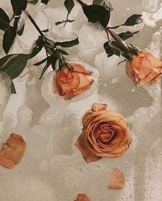 ☆ pinterest: lilosplanets ☆ Rose bathtub